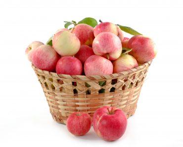manzanas para engordar