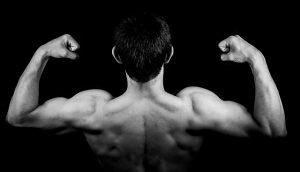 entrenar musculos espalda