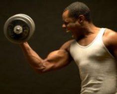 costruir biceps