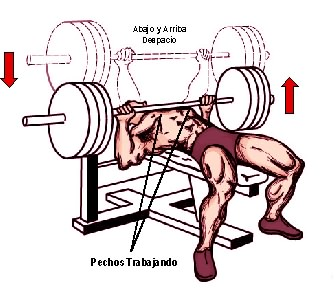 pecho de banca o bench press