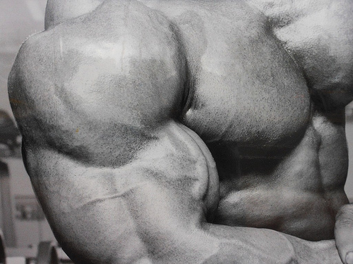 brazos mas grandes