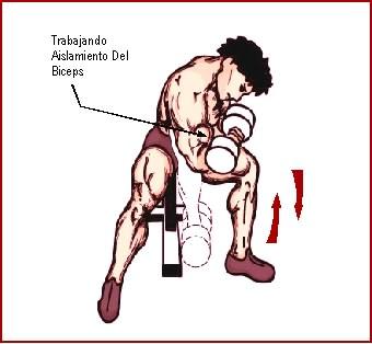 ejercicios para brazos con mancuerna