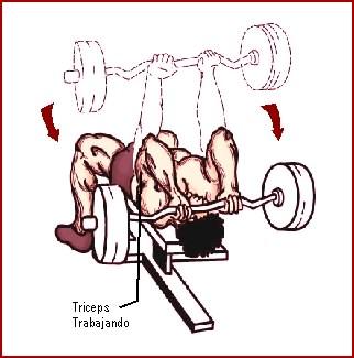 ejercicios para brazos con skull crusher