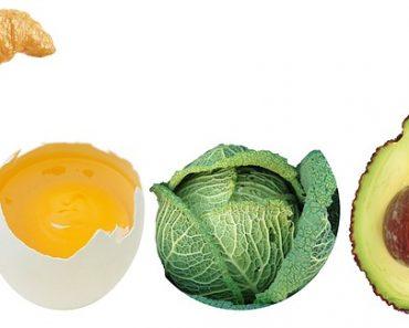 nutricion de proteinas
