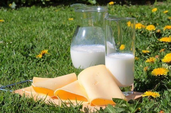 proteinas en productos lacteos